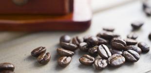 おきなわ夢コーヒーオーナー制度のイメージ